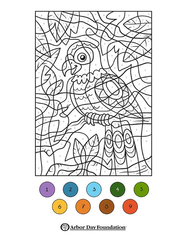Coloring Pages At Arborday Org