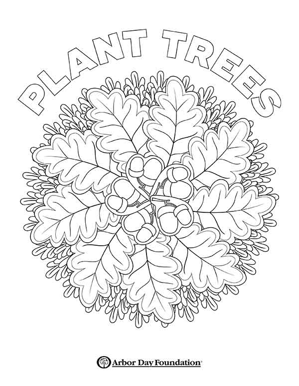 - Coloring Pages At Arborday.org