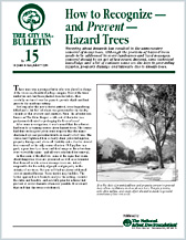 How to Recognize and Prevent Hazard Trees
