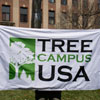 Tree Campus USA Flag