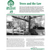 Trees and the Law