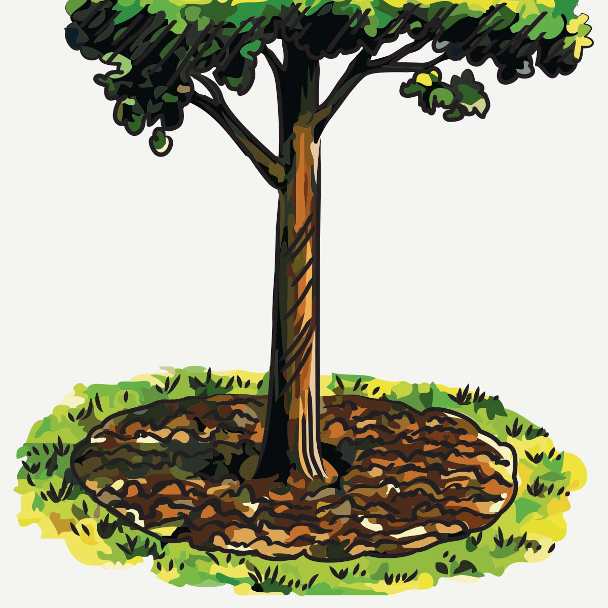 Tree Care Tips & Techniques at arborday org