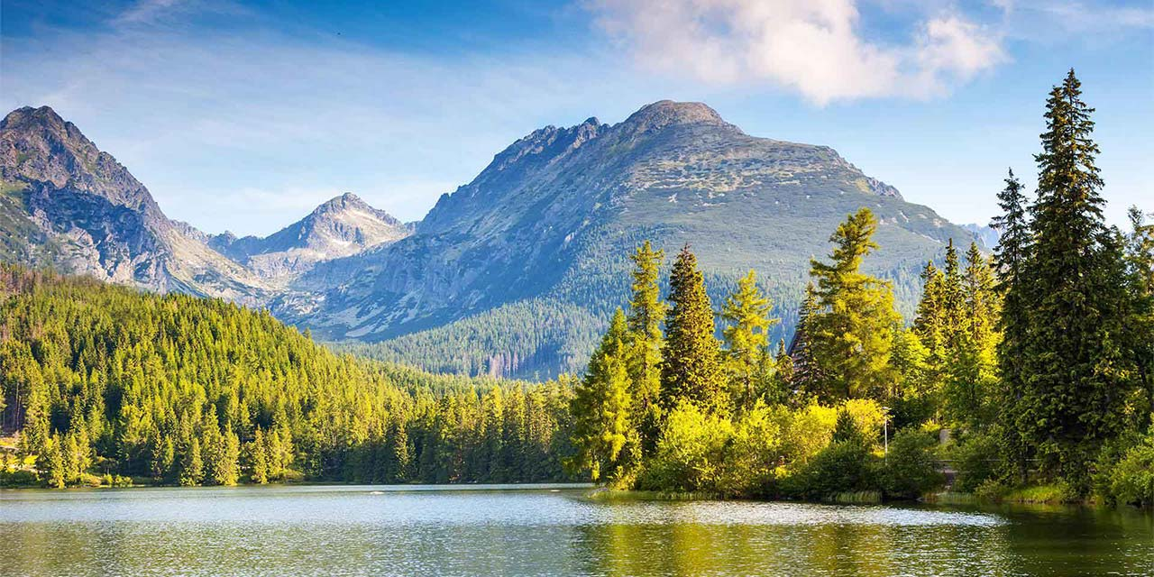 forest lake and mountain