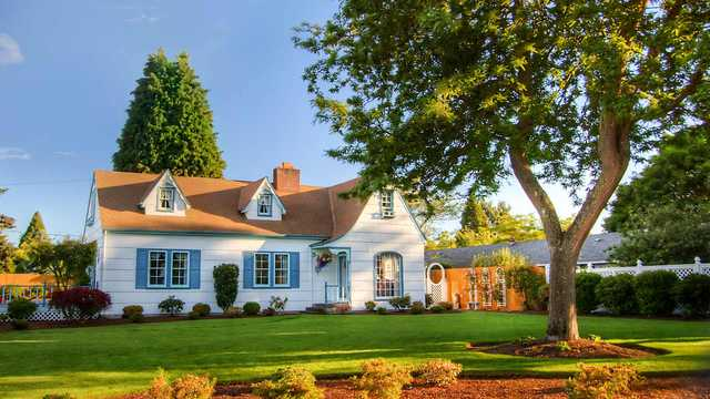 Image result for old house with trees around