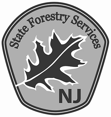 New Jersey State Forestry Services http://www.state.nj.us/dep/parksandforests/forest/