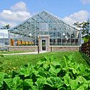 The Lied Greenhouse at Arbor Day Farm