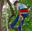Arbor Day Celebration 2015