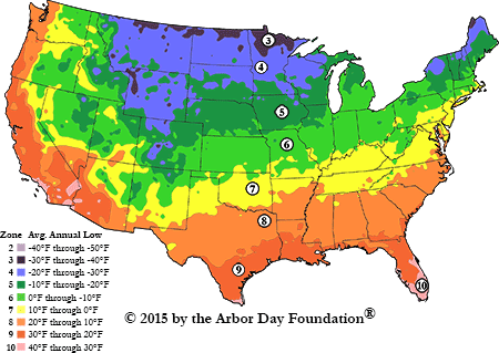 Hardiness Zone Map at arborday.org