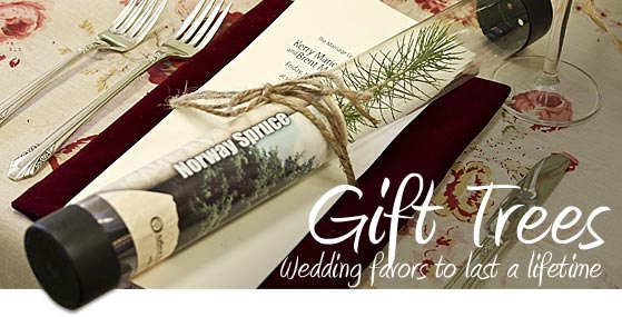 Give trees to your guests as a special reminder of your big day.