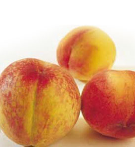 Hale-Haven Peach—Prunus persica
