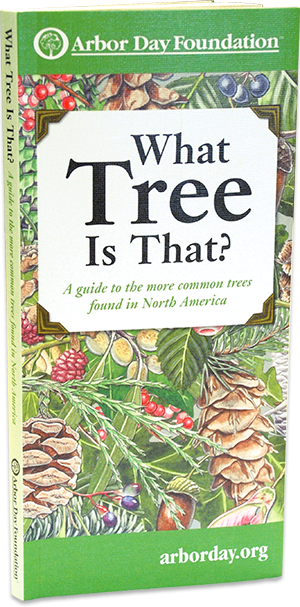 What tree is that tree identification guide at arborday what tree is that pocket field guides mightylinksfo