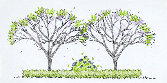 Landscape Design - Trees at arborday.org on herb garden under tree, idea for plant around tree, yoga under tree, lighting under tree, books under tree, patio under tree, composting under tree, perennial gardens under tree, plants under tree, annuals under tree, wood under tree, woman under tree, under the tree, roses under tree, home under tree, girl under tree, flowers under tree, container garden under tree, decorating under tree, buddha under tree,